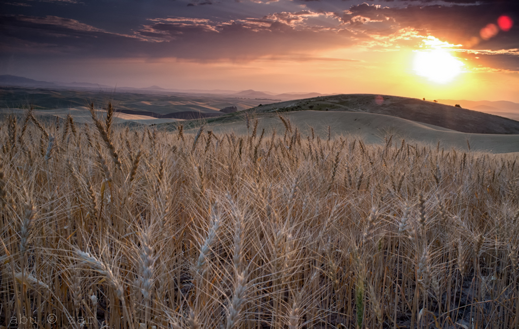 Palouse_Sunrise